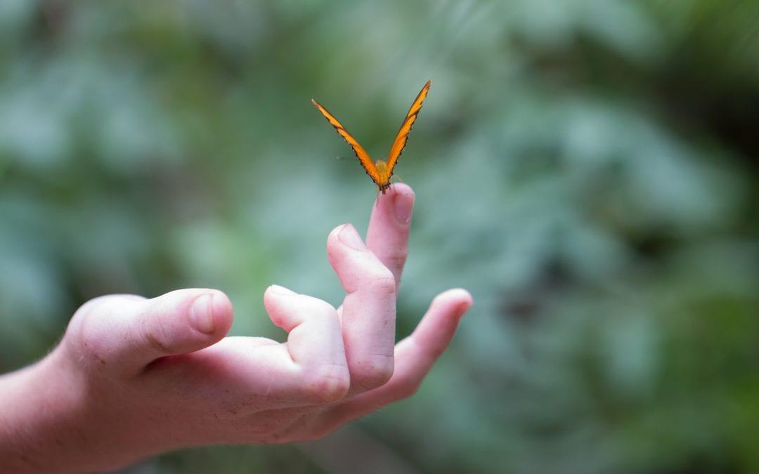denver-life-coach-therapist-online-vulnerability-brene-brown-relationships colorado denver tech center cherry creek broomfield international skype
